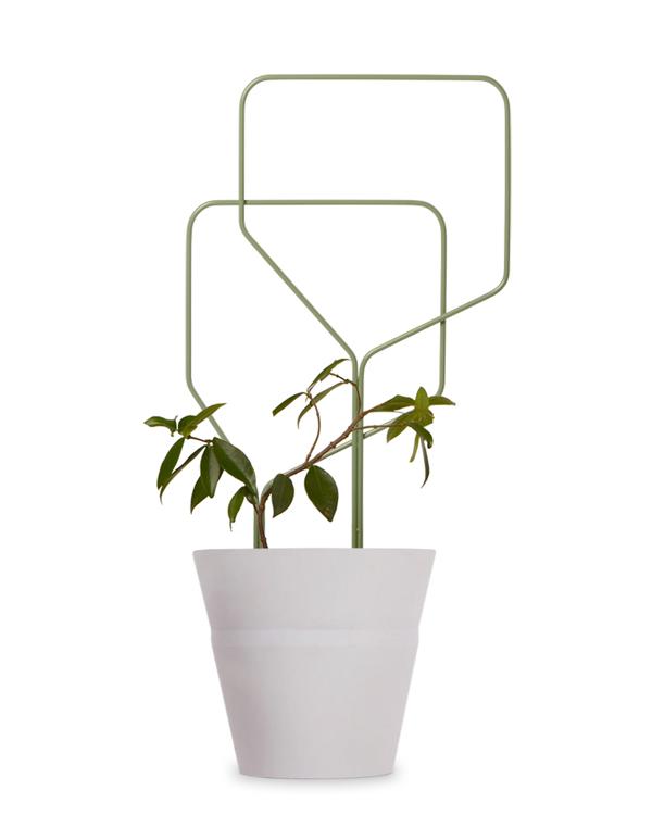 plant trellis climbing plant olive green plant trellis bent steel rod pot plant trellis
